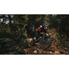 ROCKY MOUNTAIN Growler 50 (2021)